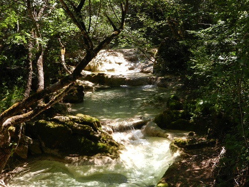 C est un coin de verdure ou chante une riviere